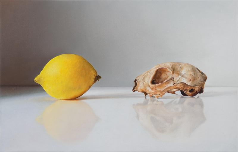 Zitronenbaum und Marder